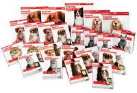Pet-Tek-Box-Group-Photo.jpg
