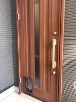 玄関ペットドア2