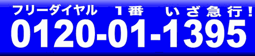 0120-011-395