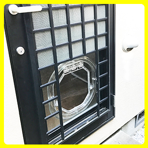 ガラス用中型犬ドア